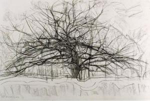 Tree: study for the gray tree