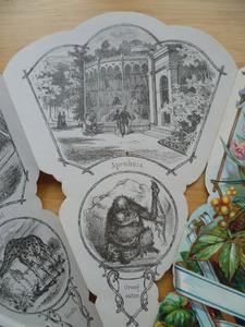 Medaille waaier: Apenhuis en orang oetan