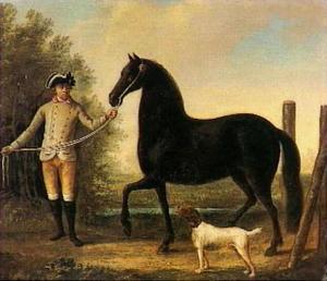 Een rijpaard geleid door een stalknecht