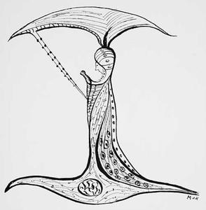 Fantasiefiguur naar een anatomische dwarsdoorsnede
