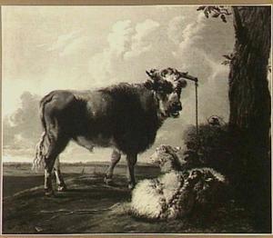 Een stier en twee schapen in een landschap