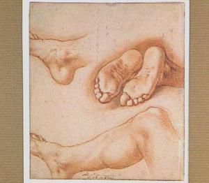 Studies van een been en voeten