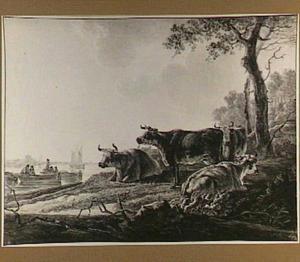 Koeien aan een rivieroever