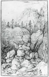 Berlandschap met naaldbomen en waterval