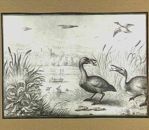 Heuvellandschap met visetende vogels bij een rivier