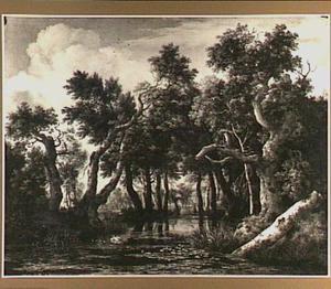 Boslandschap met een vijver met waterlelies