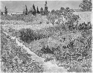 Bloeiende tuin met een pad