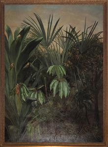 Tropische plantengroep
