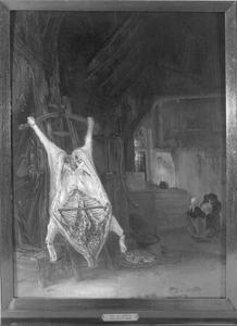 Geslacht varken in een stal