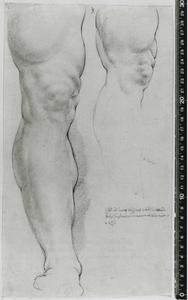 Studie van Hercules Farnese