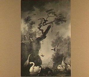 Vogels aan de waterkant in een parkachtig landschap