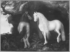 Twee paarden voor een begroeide rotswand