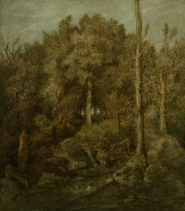 In het woud van Fontainebleau
