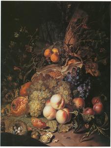Stilleven van vruchten, met een vogelnest en insecten aan de voet van een boom