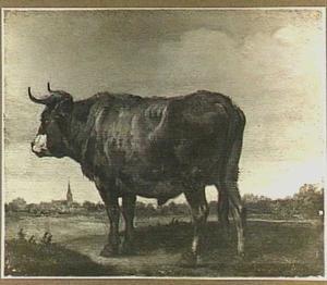 Stier in een landschap