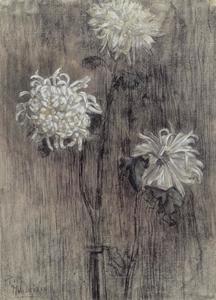 Chrysanthemums (authentiek)