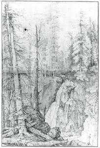 Bebost berglandschap met waterval