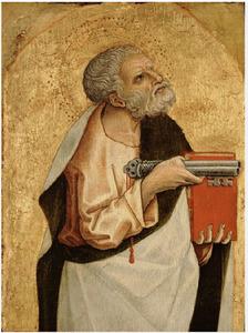 Petrus de apostel