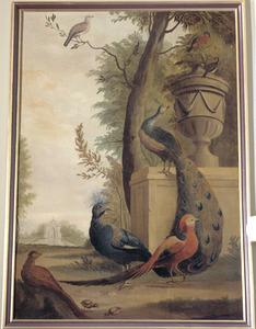 Vogels in parklandschap, waaronder een turkse tortel, een (witkop?-)goean, goudfazanten en een pauw