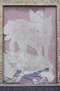 Wolf met hyena