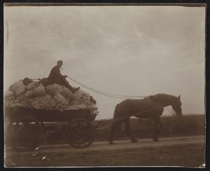 Militair op een paardenwagen