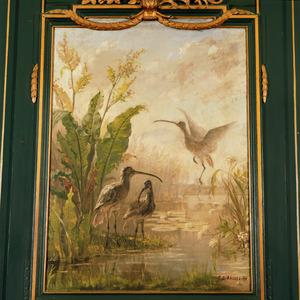 Rivierlandschap met waterplanten en Wulpen (Numenius arquata)