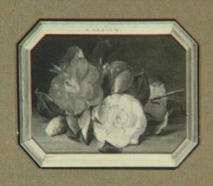 Bloemstilleven met roos