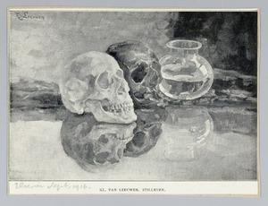 Stilleven met schedels