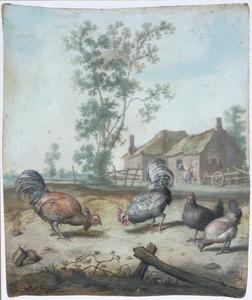 Boerenerf met kippen en hanen