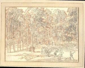 Rheden, gezicht in het Middachter bos