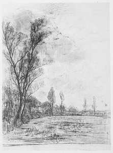 Field with row of trees at left