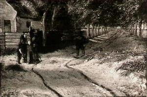 Landweg met bomen