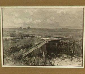 Weidelandschap met houten brug over een sloot
