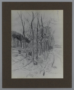 Schets van een laantje met bomen