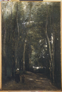 Allée sous bois