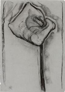 Study for arum lily