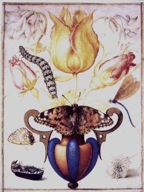 Vierge femelle datant Virgo mâle