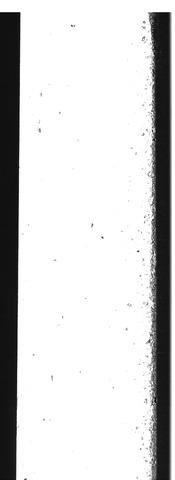 Goudsche Courant 1994-01-01