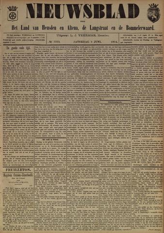 Nieuwsblad het land van Heusden en Altena de Langstraat en de Bommelerwaard 1894-06-09