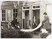 Kraakbeweging. Krakers hebben de woningen aan de Pastoor Schutjesstraat 22 en 24 gekraakt. Op 27 juli 1971 werden de woningen afgebroken maar dit ging niet zonder slag of stoot       want de krakers protesteerden heftig; het was die gehele dag onrustig, waarbij zelfs op een politieagent is geschoten
