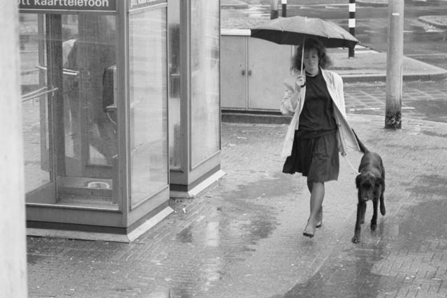 TLB023000019_001 - Dame met hond en paraplu passeert telefooncel met kaarttelefoon. Foto gemaakt ten behoeve van de Begrotingskrant van Tilburg, waarin wordt aangegeven dat de stad financieel gezond is als gevolg van het Tilburgs Model