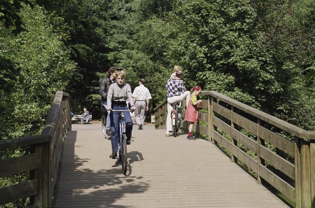 TLB023000731_002 - Bosvreugd, wandelaars en fietsers recreatie in de natuur.