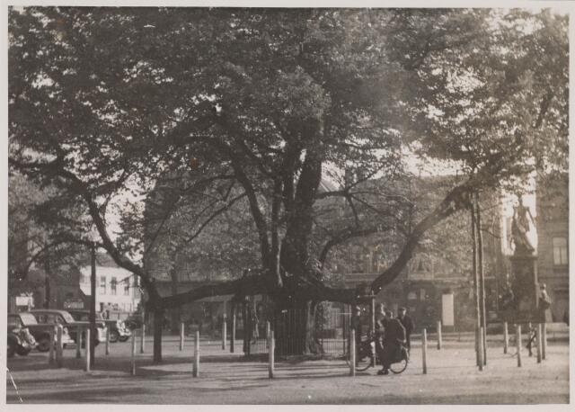 021386 - De lindeboom op de Heuvel kort na de Tweede Wereldoorlog