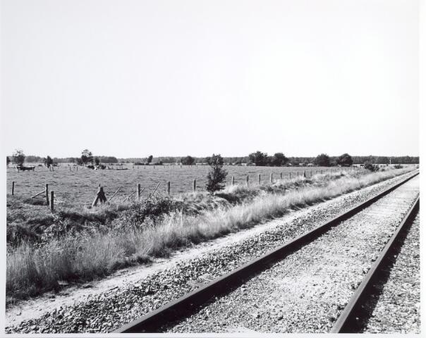 015337 - Landschap. Omgeving van de voormalige spoorlijn Tilburg - Turnhout, in de volksmond ´Bels lijntje´ genoemd