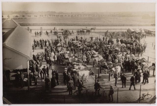 040761 - De veemarkt op het Gemeentelijk slachthuis (abattoir)   Enschotsestraat/Wilhelminakanaal.
