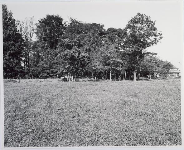 015408 - Landschap. Omgeving van heerboerderij De Blaak