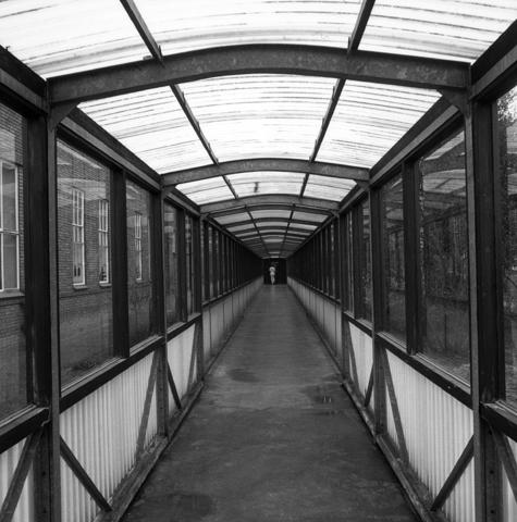 655722 - Elizabeth Ziekenhuis locatie Jan van Beverwijckstraat Tilburg in 1981.