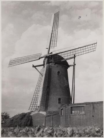 100818 - Korenmolen De Hoop Den Hout.