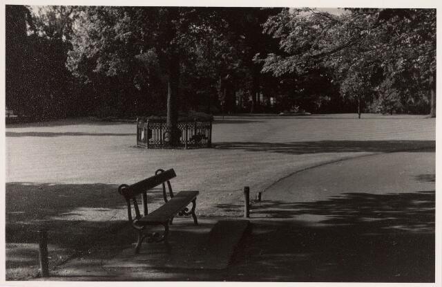 035132 - Uitzicht op de Wilhelminaboom met op voorgrond een bankje in het Wilhelminapark