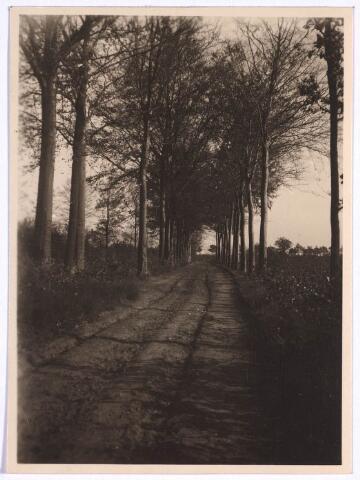 022822 - Bospad in de Rauwbraken.anno 1920. Thans is hier een industrieterrein.